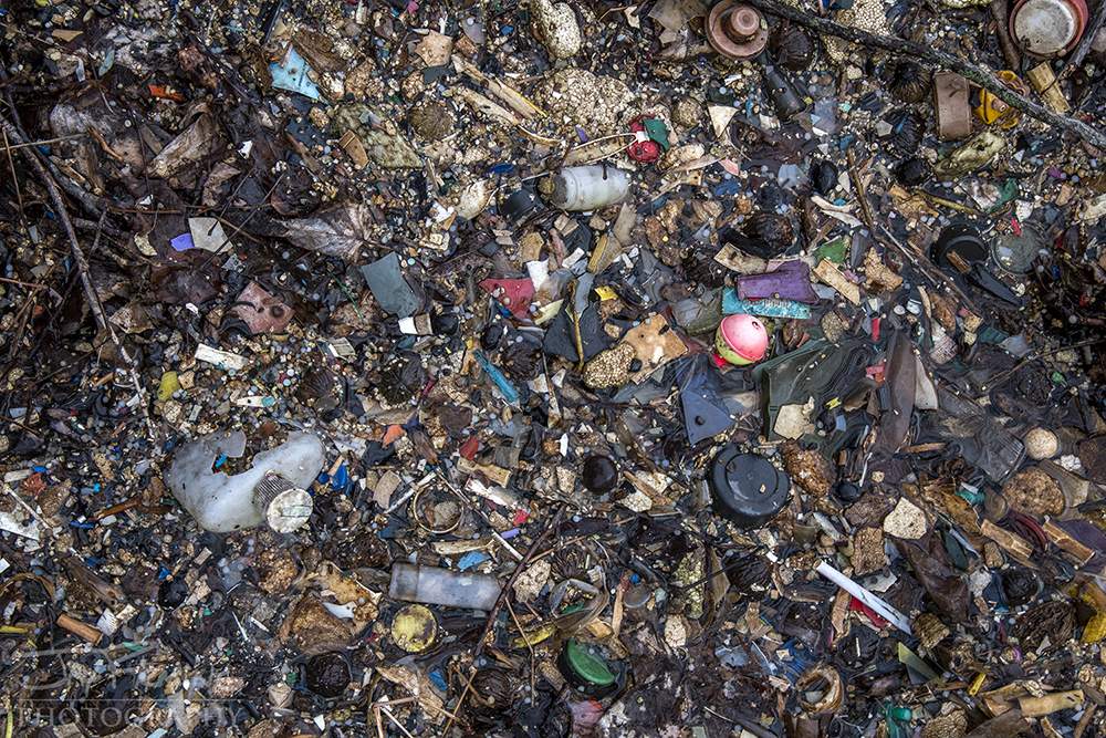 Plastic, Styrofoam and other pieces of floating trash accumulating along the shorelines of the Susquehanna River.
