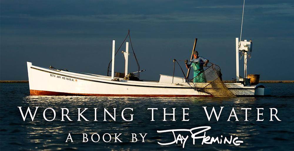 JayFleming-WTW.png