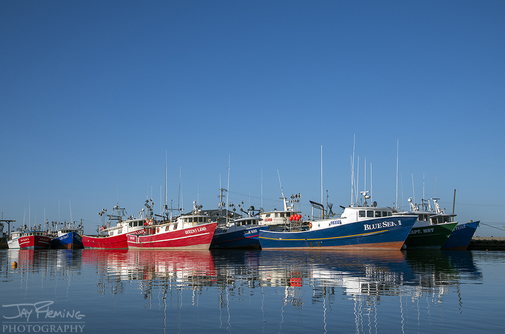 The Tuna long-lining fleet out of Dulac is run by Vietnamese captains. There are approximately 30 long-lining boats left in the Gulf of Mexico - in Dulac and Panama City Beach.