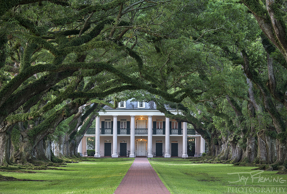 Oak Alley Plantation near Vacherie, Louisiana