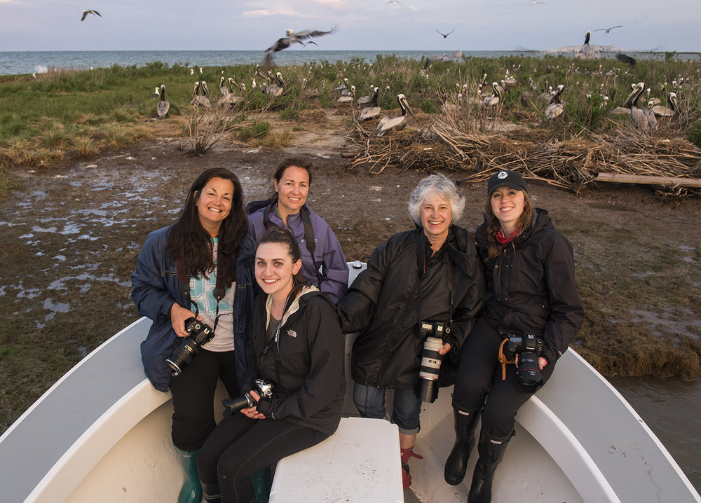 Group shot after a successful evening shoot at one of the islands Brown Pelican colonies.