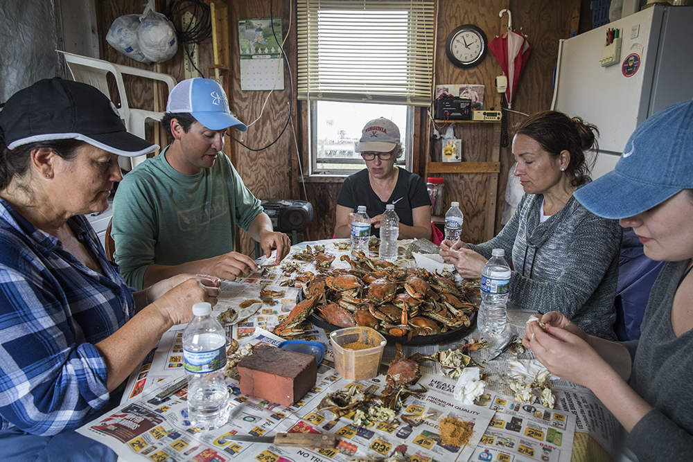 Crab feast in a waterman's shanty on day two of the workshop. Students were able to photograph these crabs being harvested before lunch.