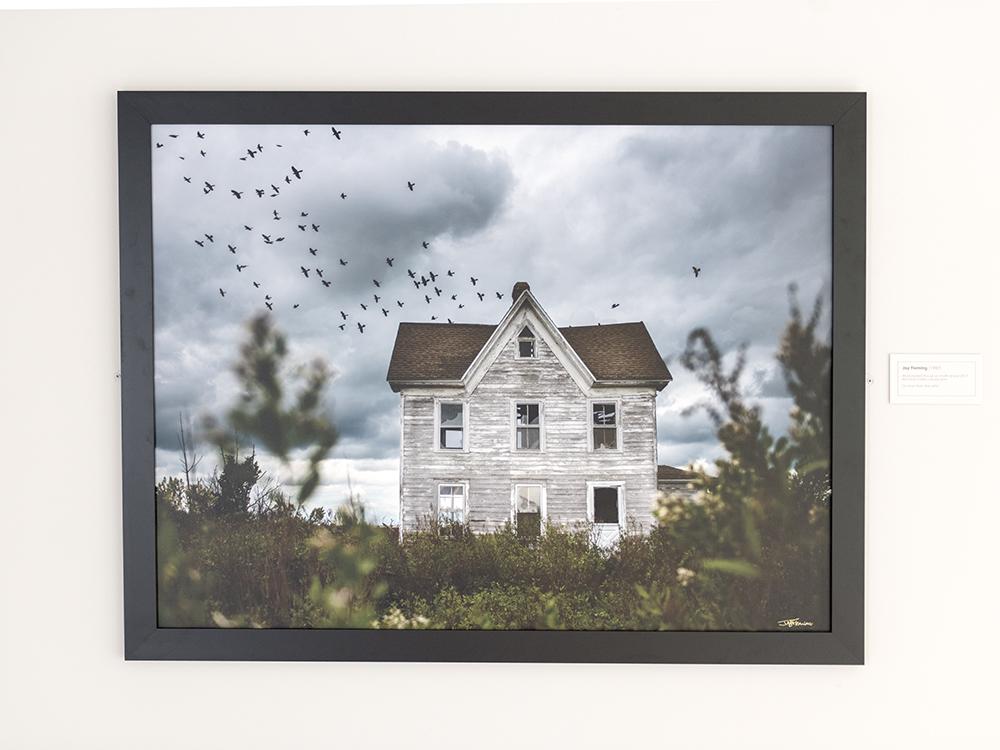 AAM Exhibit Island Life © Jay Fleming 07.jpg