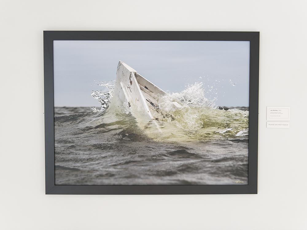 AAM Exhibit Island Life © Jay Fleming 08.jpg