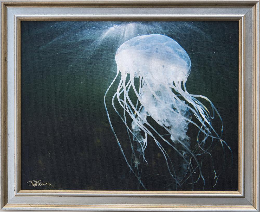 Custom Framed Canvas Print- © Jay Fleming08.jpg