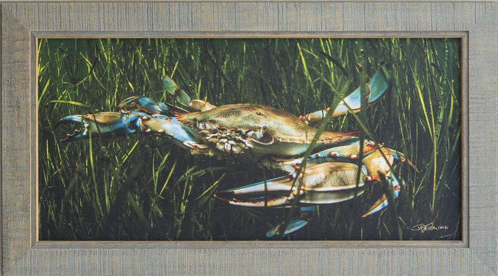 Custom Framed Canvas Print- © Jay Fleming18.jpg