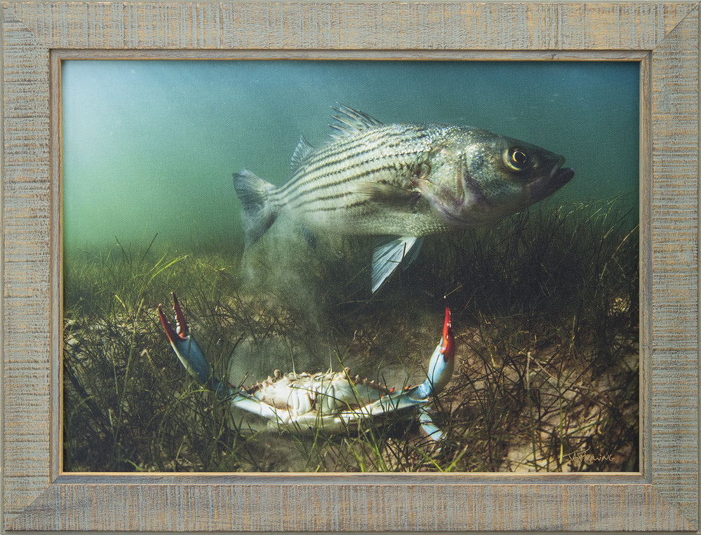 Custom Framed Canvas Print- © Jay Fleming31.jpg
