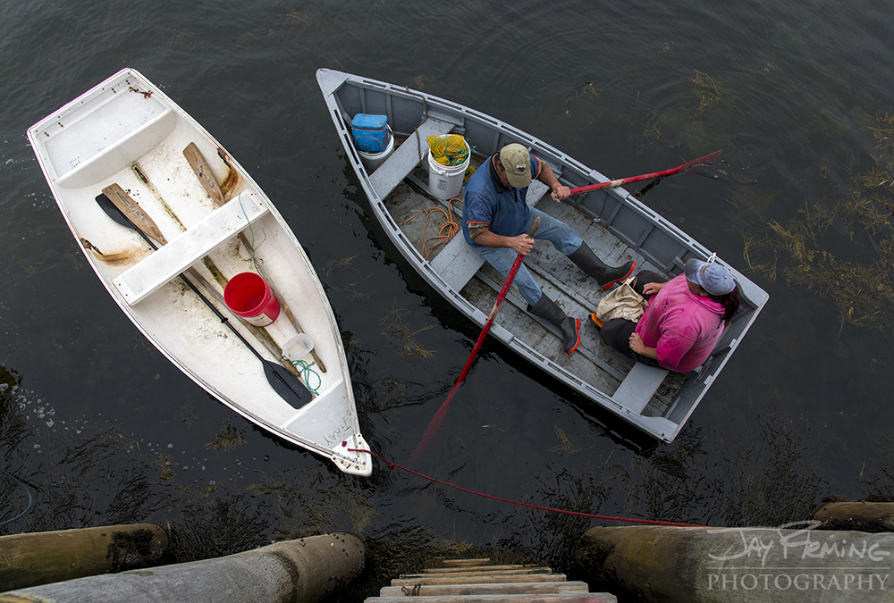 Lobsterman, Clayton Philbrook, rowing his skiff back to the wharf after a day of lobstering out of Matinicus Island.