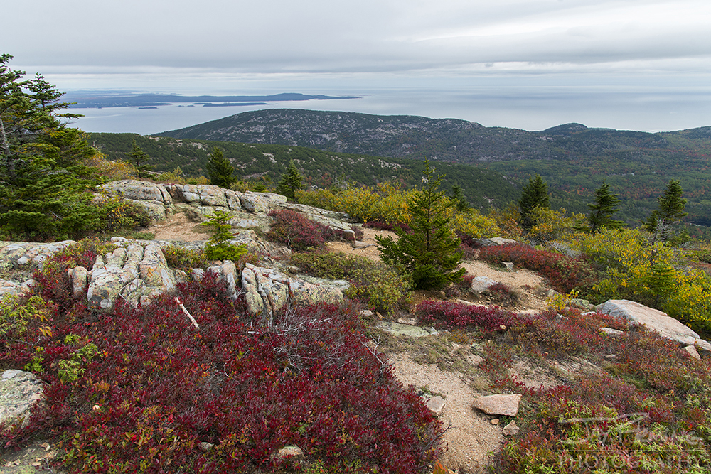 Looking east from the summit of Cadillac Mountain, Maine's highest peak.