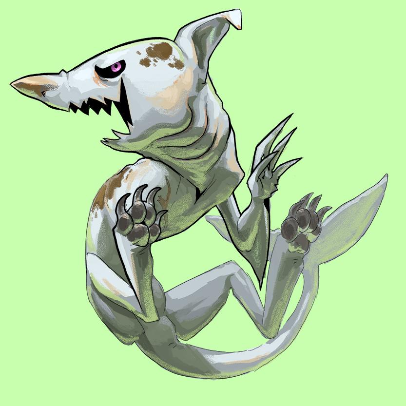 sharkdog.png