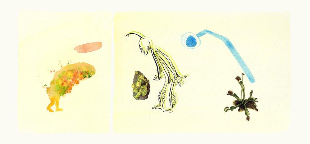 Kim L Pace, Weed Envy , archival pigment print on watercolor paper, 30x14, unique
