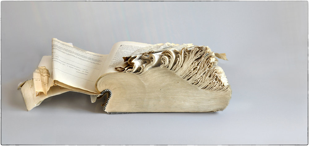 Timothy Wilson,  Frayed Dictionary , Photograph, 12x21, $300