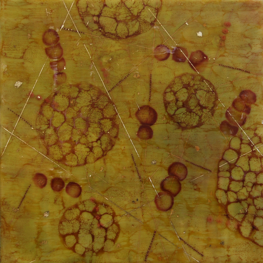 Kay Hartung,  Bio Pathways 2 , encaustic and mixed media, 16x16