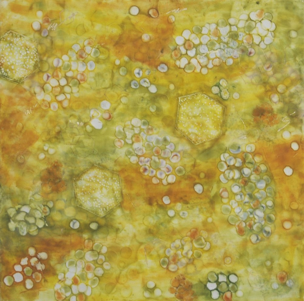Kay Hartung,  Bio Fusion 11 , Encaustic and mixed media, 24x24
