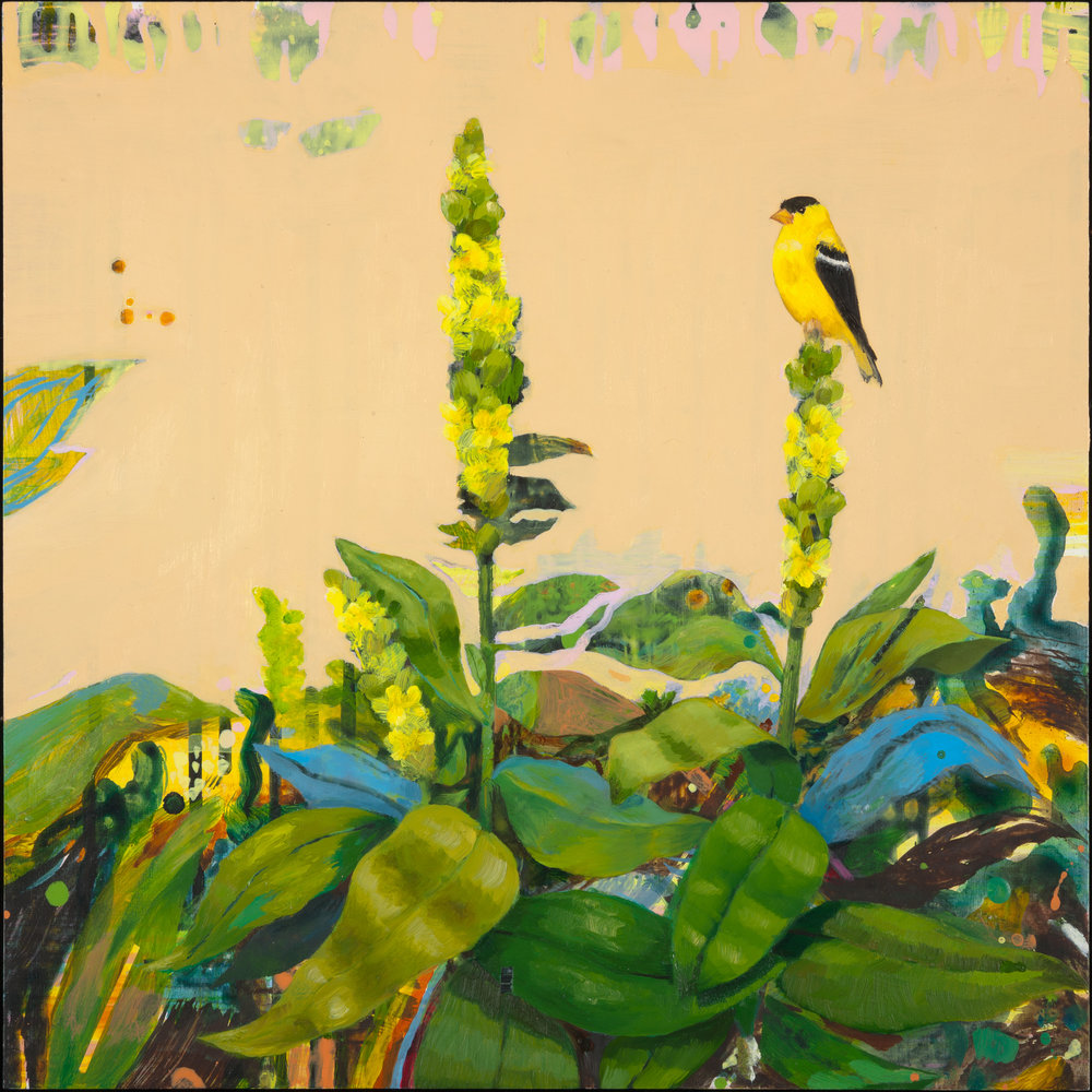 "Anne Sargent Walker, Mullein with Goldfinch, oil and acrylic on wood panel, 16"" x 16""."