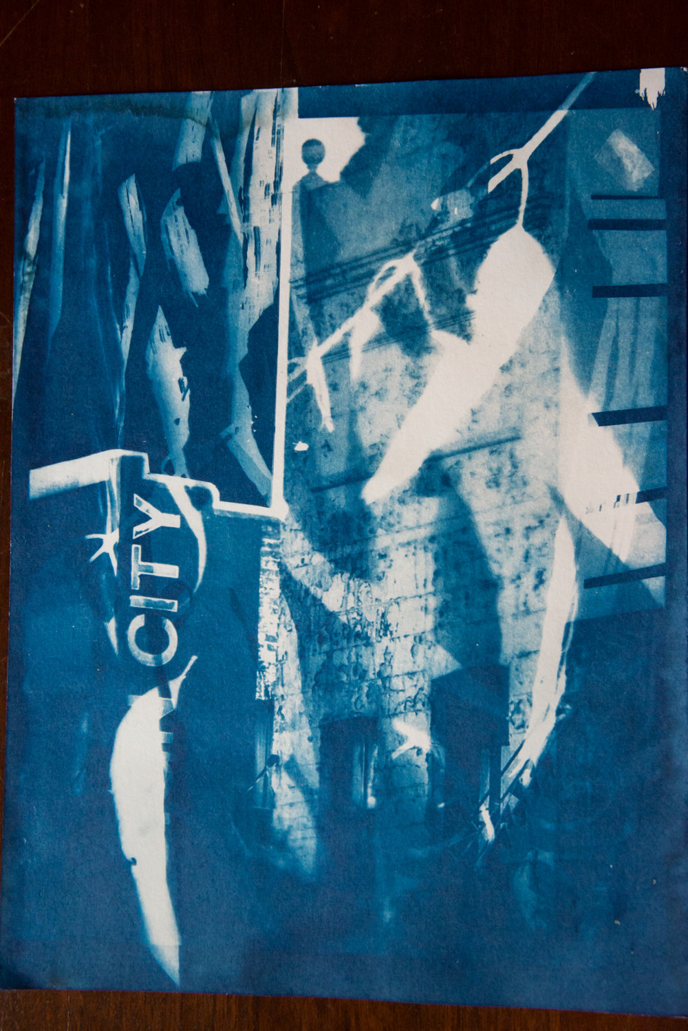 Marie Craig,  Sign City 3,  cyanotype on paper, 17x14, framed