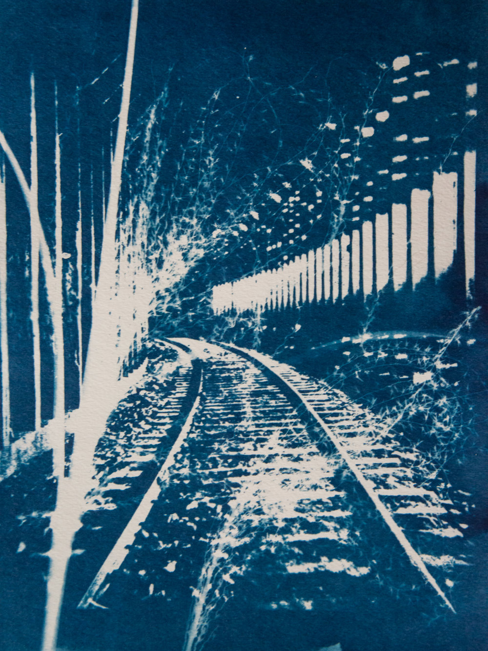 Marie Craig,  Railway Tunnel 5,  cyanotype on paper, 12x9