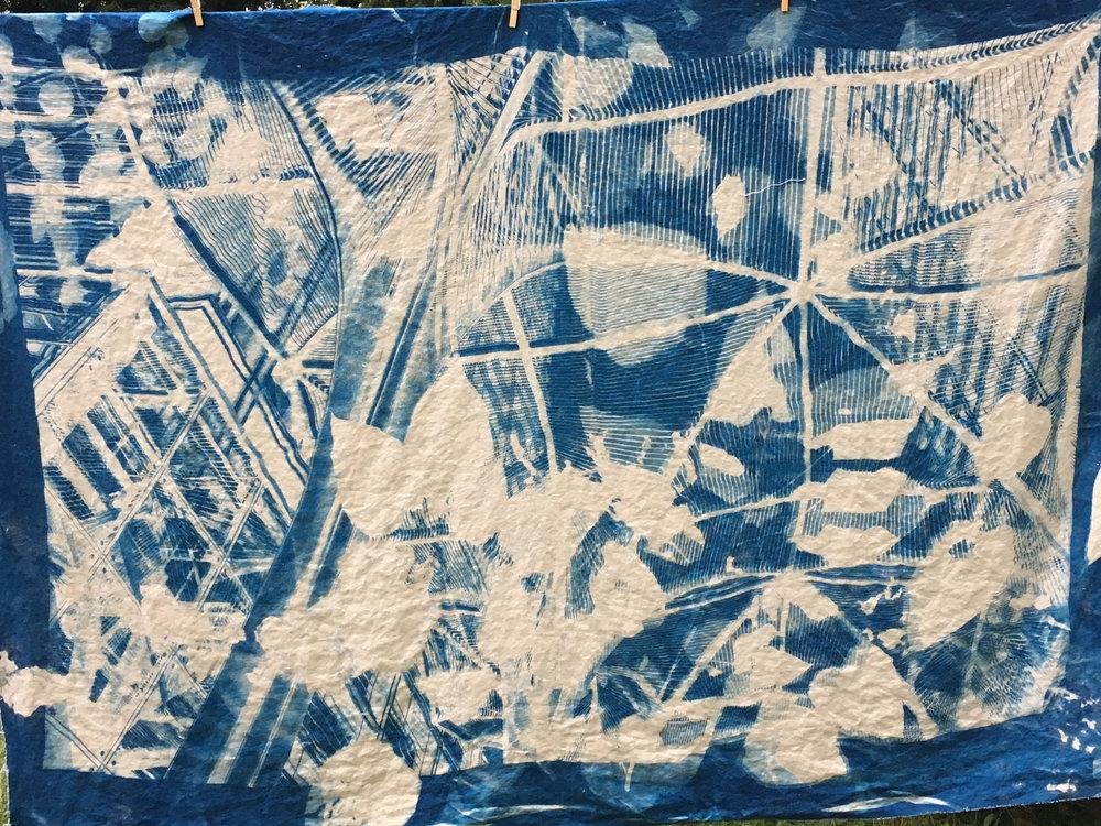Craig cyanotype process  - 2.jpg