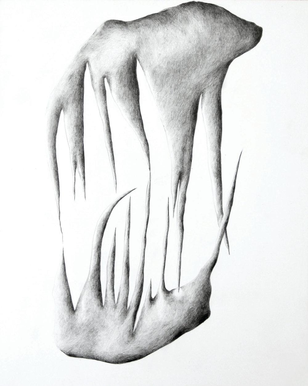 Gabriella Carboni, Prick ,graphite on claybord,8 x 10,$250
