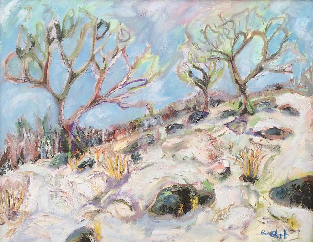 Bob Grignaffini,  Burnt Hill , Acrylic, 26x28