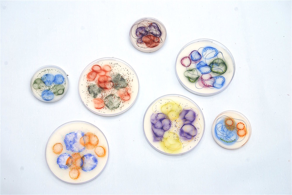 "Hartung,  Cell Samples ,  Grouping 1,   Encaustic, pastel, petri dish, thread, glass balls, 4"" diameter, 6"" diameter"