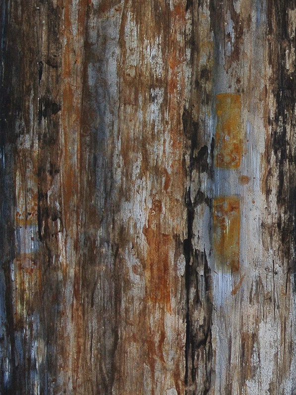 Stripe #1 (detail),  mixed media on paper with rust collected from plumbing equipment, 21 x 51 inches