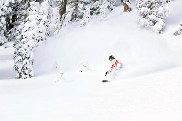 Photo Courtesy of Wolf Creek Ski Area