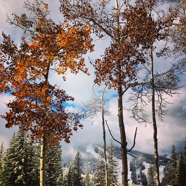 """  The seasons are colliding at #WinterParkResort. We welcomed another blanket of white on the slopes this morning!"" - @winterparkresort"