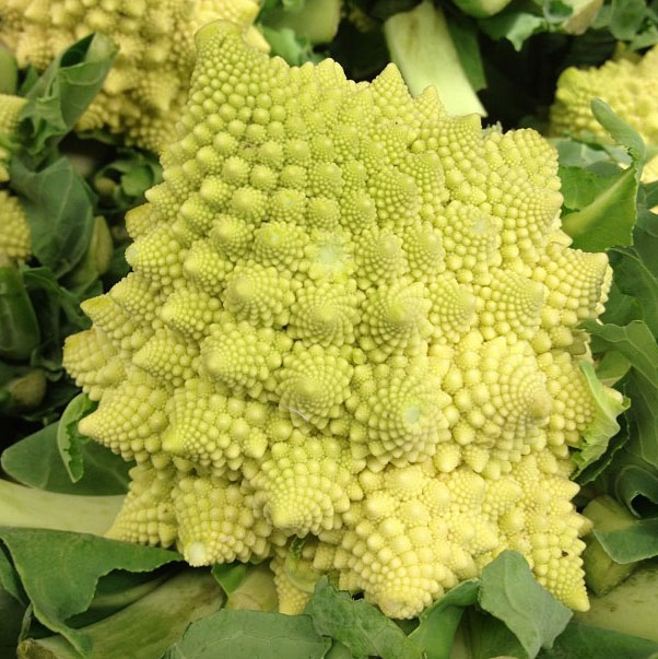 Joe's Romanesco
