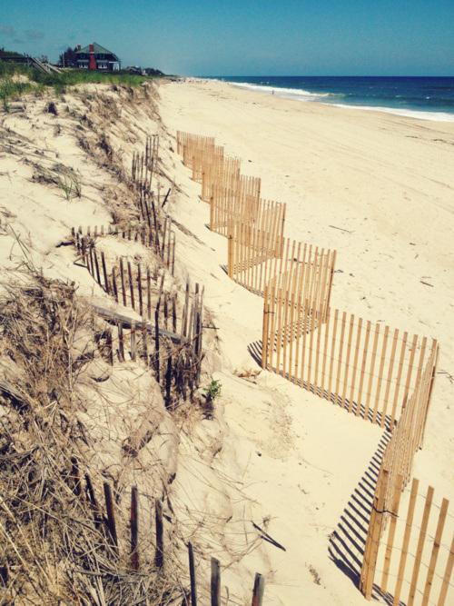 beach7.jpeg