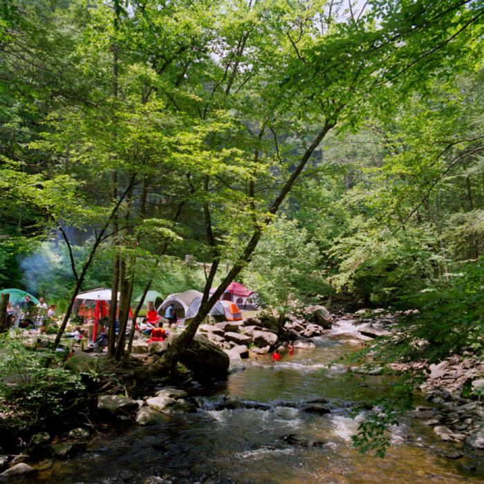 Riverside Campsite, Delaware River Valley, NY