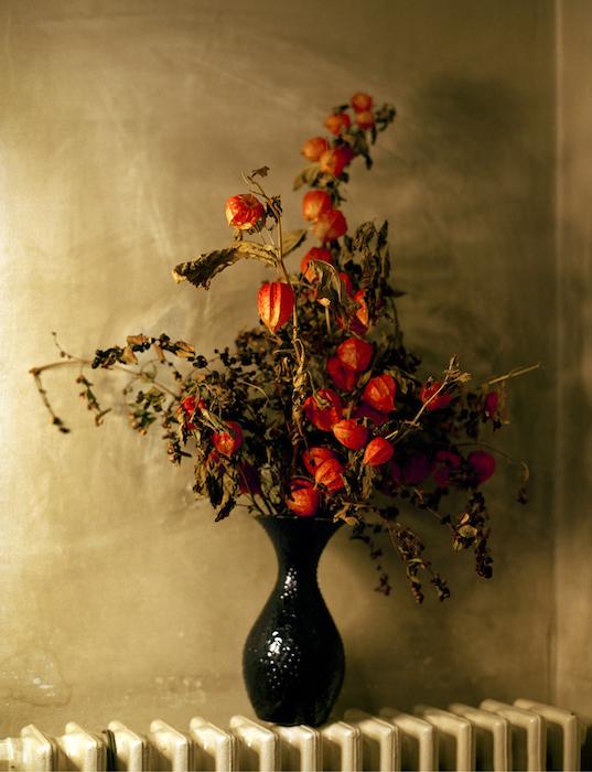Doki's Flowers, 2010