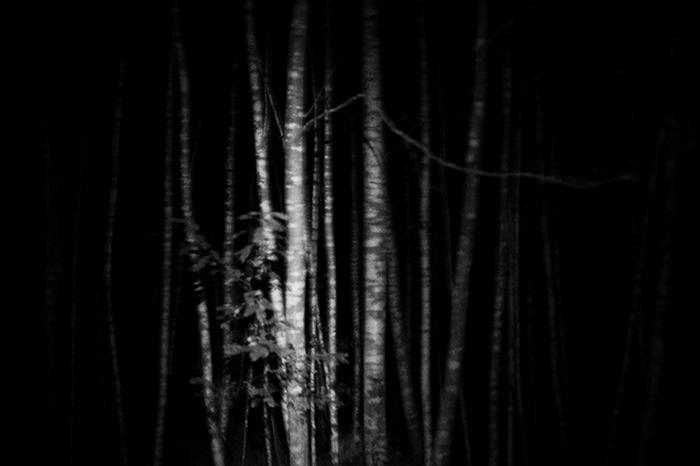Hunter06.jpg