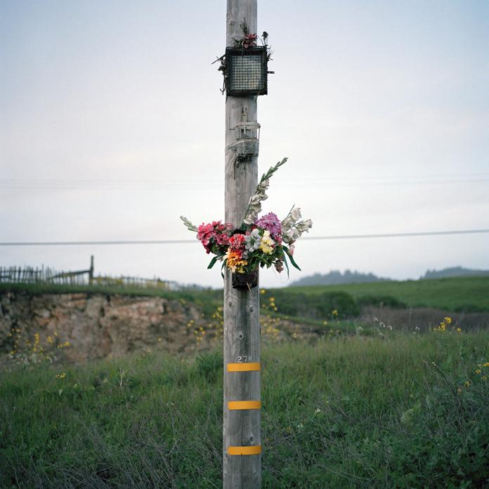 Memorial, California, 2010
