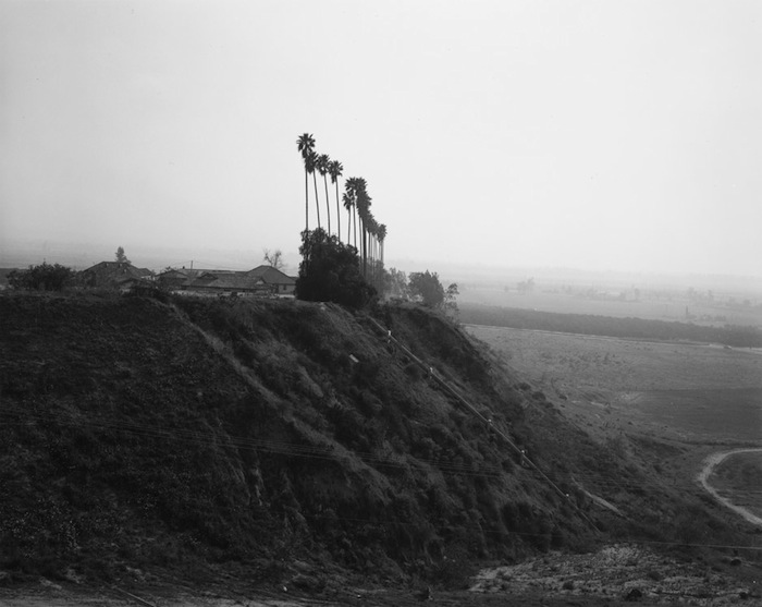 New development on a former citrus-growing estate, Highland, California (from Los Angeles Spring, 1978-1983)