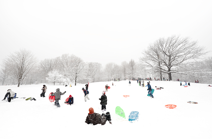 The Sledding Hill (Snowball Fight)