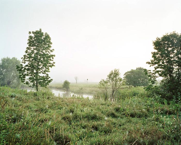 Grassland 188