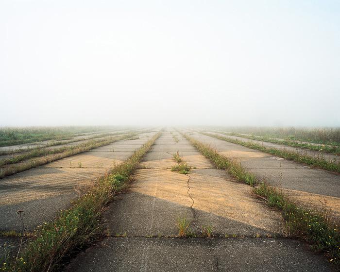Grassland 45353