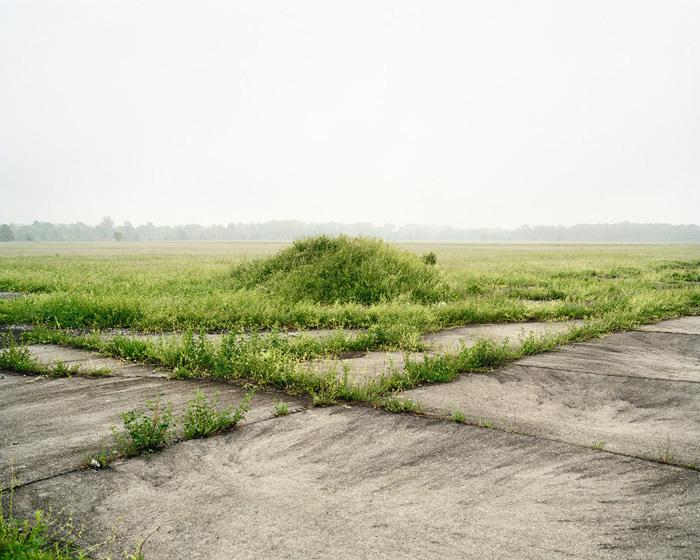 Grassland 378