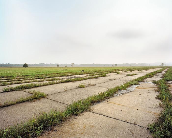Grassland 37