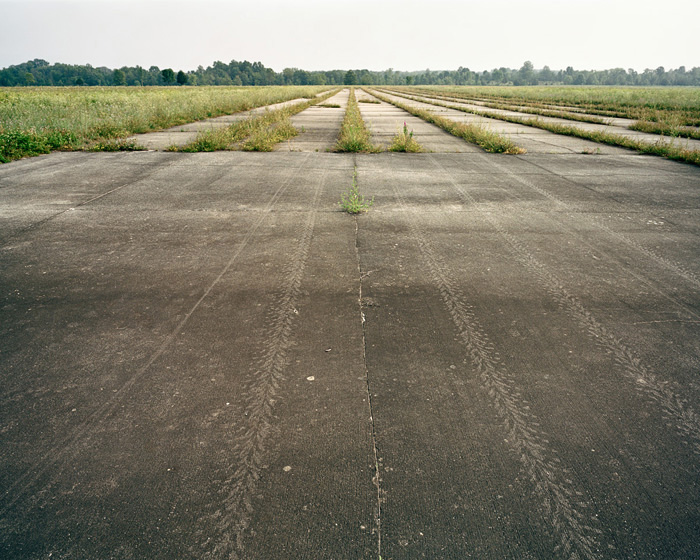 Grassland 186