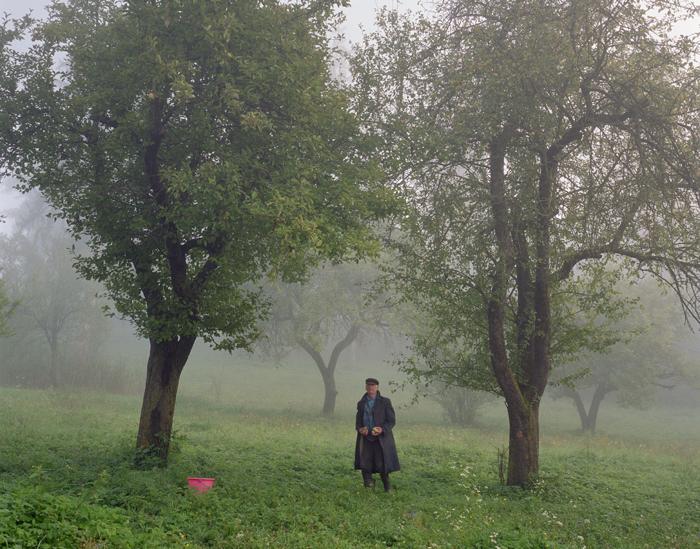 Truffle Picker, Miklosvar, Transylvania, Romania