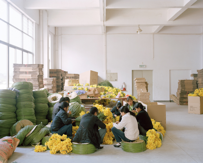 Flowers & Workers II