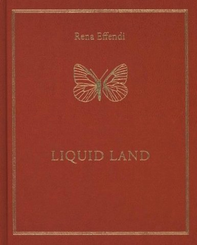 Lara Shipley reviews Liquid Land