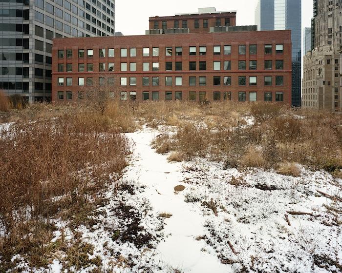 December-Chicago-2009.jpg