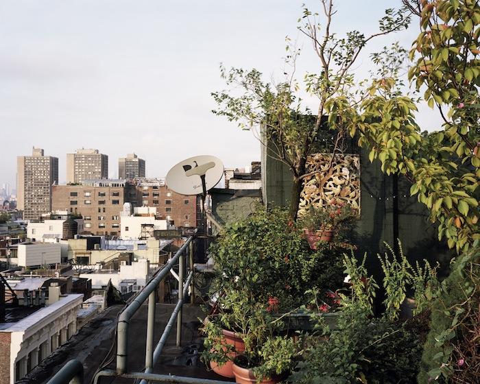 SoHo-Rooftop-a-NYC-2009.jpg