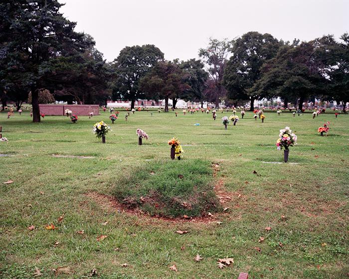 Fresh Grass, 2009