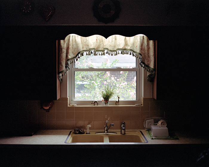 Kitchen Window, 2009