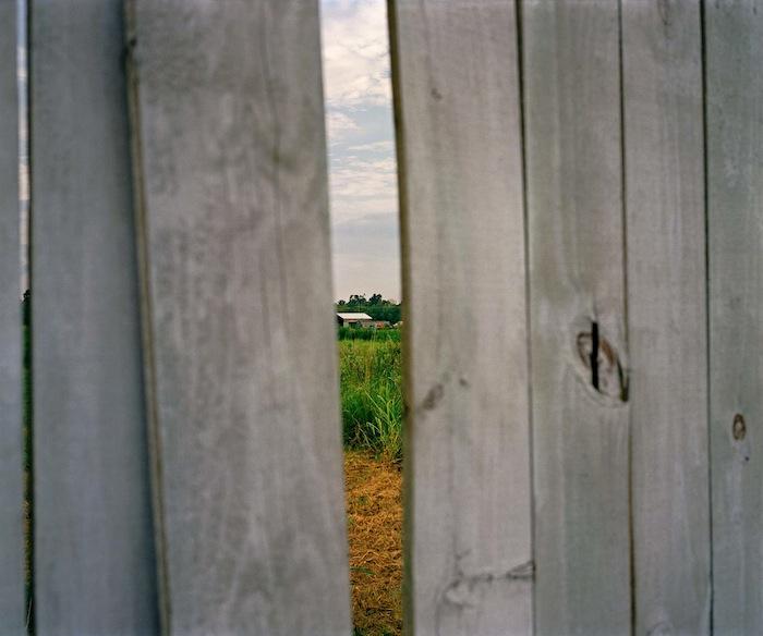 Wood Fence, BRLA 2009