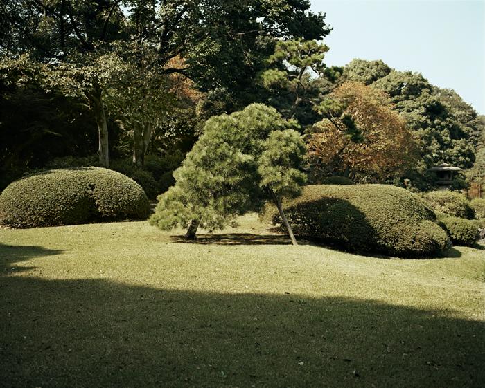 Rikugien Garden, Tokyo, 2009